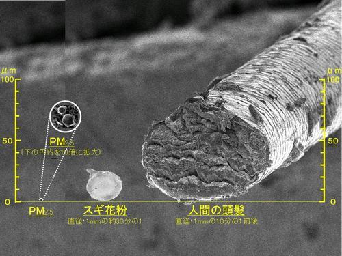 PM2.5_photo.jpg